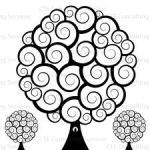 Spirals – one of myfavorites